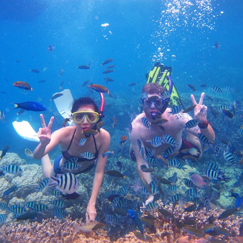 Snorkeling Trip Fujairah with Live BBQ Lunch