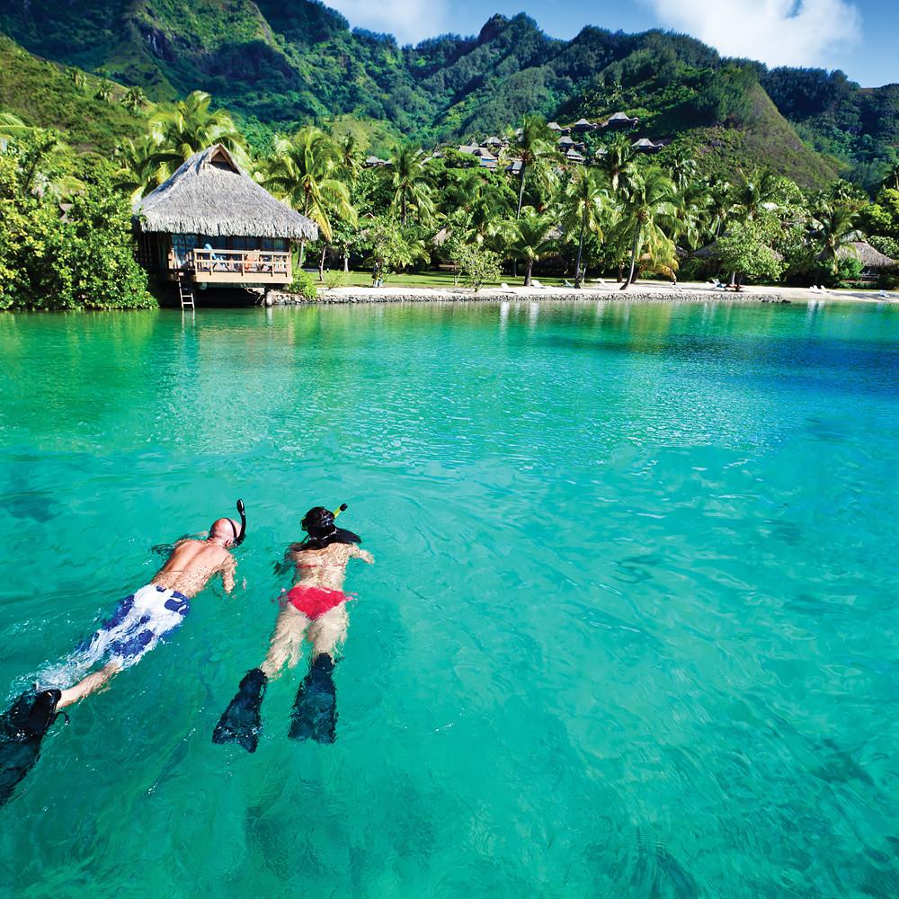Contribution to Honeymoon Suite in Fiji