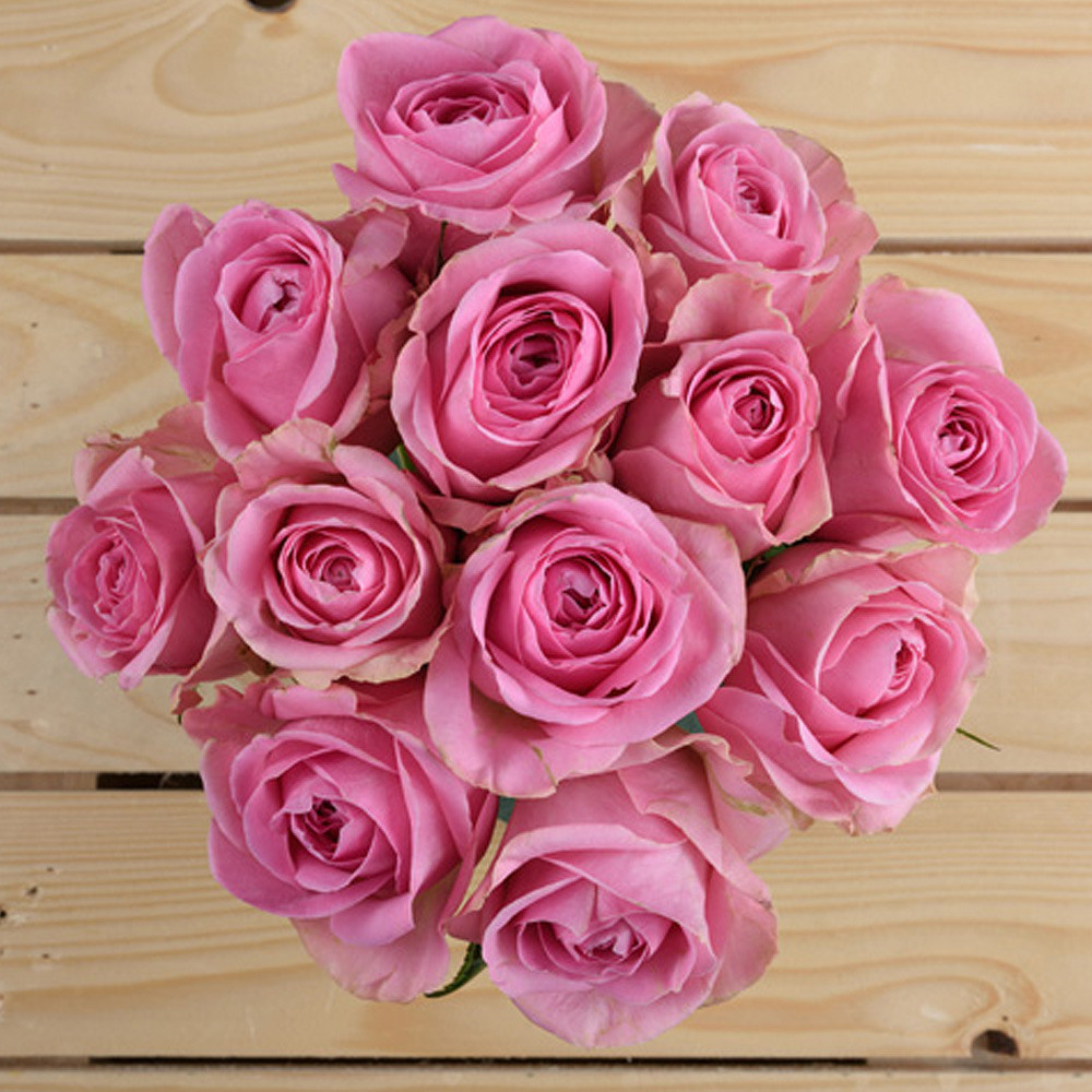 800 Flower Pink Barbie Bouquet Bunch