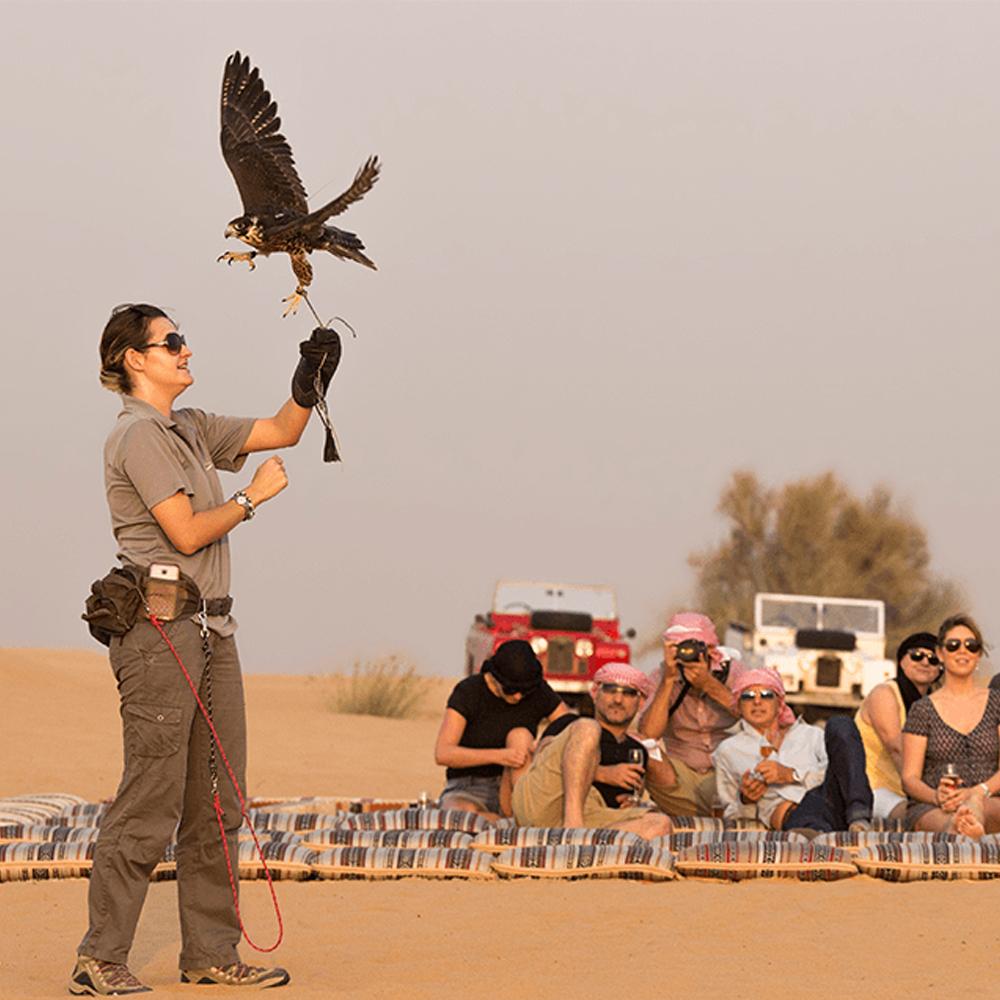 Heritage Falconry & Wildlife Safari - Adult